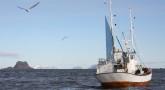 qualita merluzzo isole lofoten